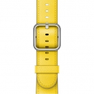 Ремешок Apple 38mm Spring Yellow Classic Buckle